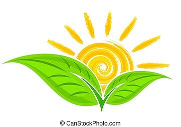 緑のプラント, sun., ロゴ
