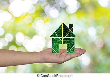 緑の家, 中に, 手