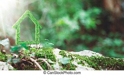 緑の家, 作られた, ∥で∥, 草, 植物, 代替エネルギー