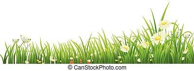 緑の草, そして, 花
