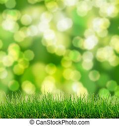 緑の草, そして, bokeh, ライト