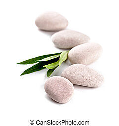 緑の葉, そして, 石