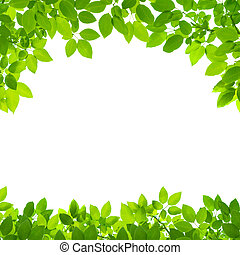 緑は 去る, ボーダー, 白, 背景