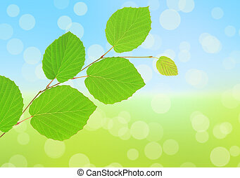 緑は 去る, 上に, 抽象的, 自然, 背景