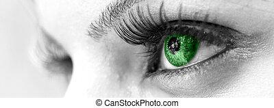 緑目, -, 美しい, 女らしい