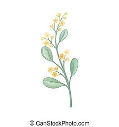 緑, つぼみ, 黄色, ベクトル, stem., イラスト, バックグラウンド。, 白い花
