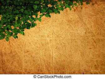 ∥, 緑, クリーパーの 植物, 上に, 古い, ペーパー