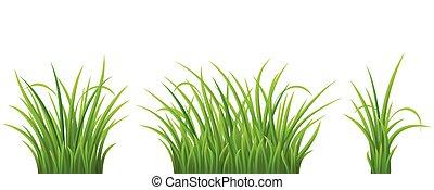 緑, セット, 草
