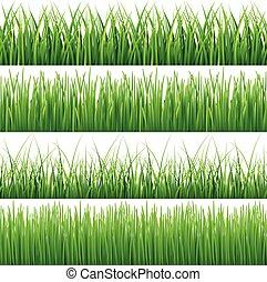 緑, ベクトル, セット, seamless, 草