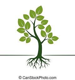 緑, ベクトル, 木, illustration., roots.