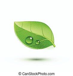 緑, 環境, 概念, アイコン