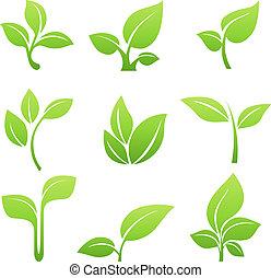緑, 芽, シンボル, ベクトル, アイコン, セット