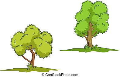 緑, 隔離された, 木
