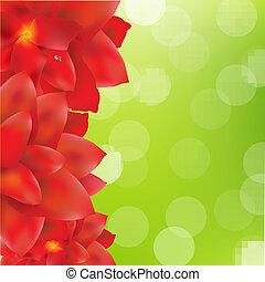 緑, bokeh, 花, ボーダー, 赤