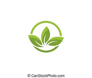 緑, elemen, エコロジー, 葉, 自然