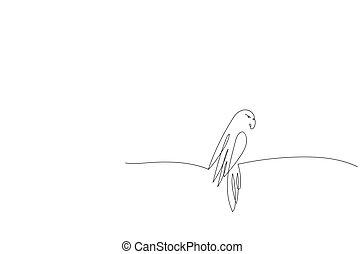 線, デザイン, 1(人・つ), parrot.