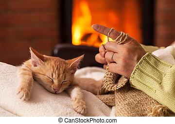 編みなさい, 彼女, 前部, ひざ, 子ネコ, 暖炉, 女, 睡眠, 使い果たされた