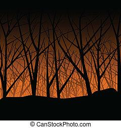 縈繞心頭, 森林