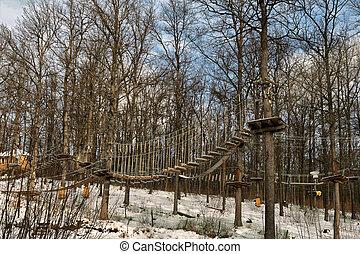 繩子, 路線, 在, the, forest.