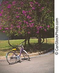 红的自行车, 在中, 夏天, 公园