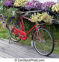 红, 葡萄收获期, 自行车