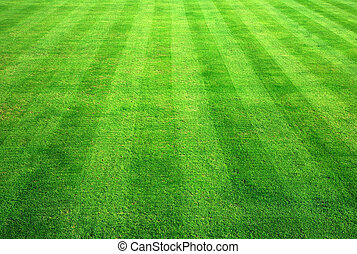 绿色的保龄球, 草, 背景。