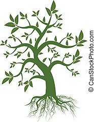 绿色的叶片, 树