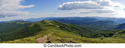 绿色的小山