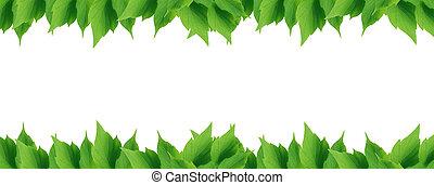 绿色的树叶, 边界