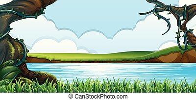 绿色的森林, 风景, 湖