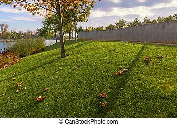 绿色的草坪, 同时,, 树, 在, the, 公园