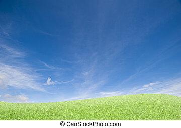 绿色的草, 同时,蓝色, 天空