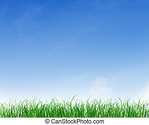 绿色的草, 在下面, 蓝色, 清楚天空