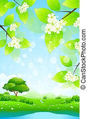 绿色的风景