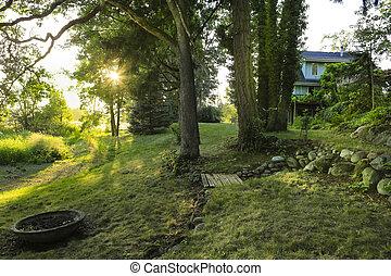 绿色, 农场房子, 后院