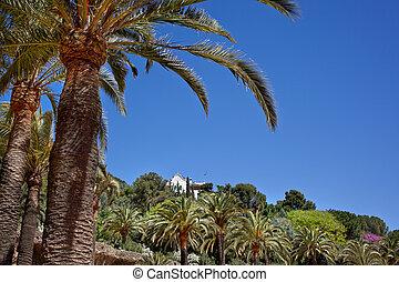 绿色, 棕榈树, 在公园中, guell, 巴塞罗那, 西班牙