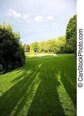 绿色, 爱尔兰人, 公园
