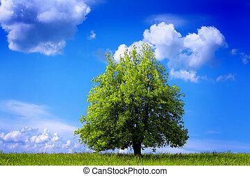 绿色, 环境