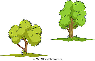 绿色, 隔离, 树