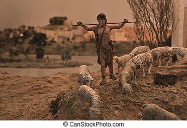 羊飼い, 上昇, 若い