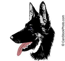 羊飼い, 頭, ドイツ語, 犬, イラスト, ベクトル, ロゴ