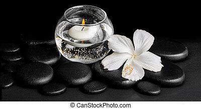 美しい, エステ, 概念, の, 露, 白, ハイビスカス, 花, そして, 蝋燭, 中に, つぼ, ∥で∥, 水, 上に, 禅, 石, パノラマ
