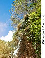 美しい, ジャングル, 滝, 自然, 光景