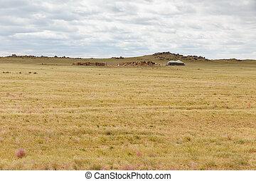 美しい, ステップ, mongolian, 風景
