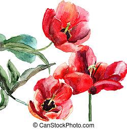 美しい, チューリップ, 水彩画の絵, 花