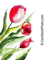 美しい, チューリップ, 花