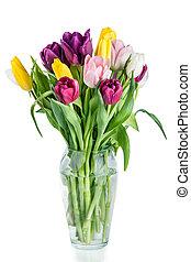 美しい, チューリップ, 隔離された, つぼ, 背景, 白い花