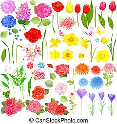 美しい, デザインを設定しなさい, 花, あなたの