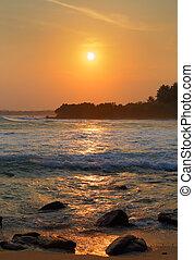 美しい, トロピカル, 日没, 風景, 海