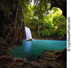 美しい, トロピカル, 自然, forest., 滝, 背景